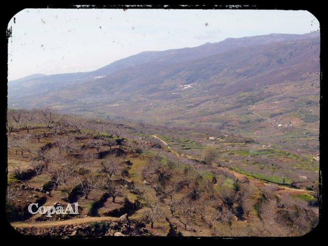 Valle_del_Jerte_05