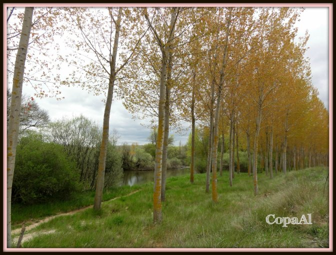 CopaAl_Senda_Duero_06