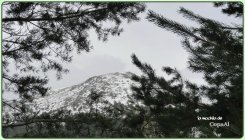 GARGANTA DEL RÍO MOROS en El Espinar