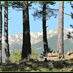 Hueco de San Blas. El hermoso valle.