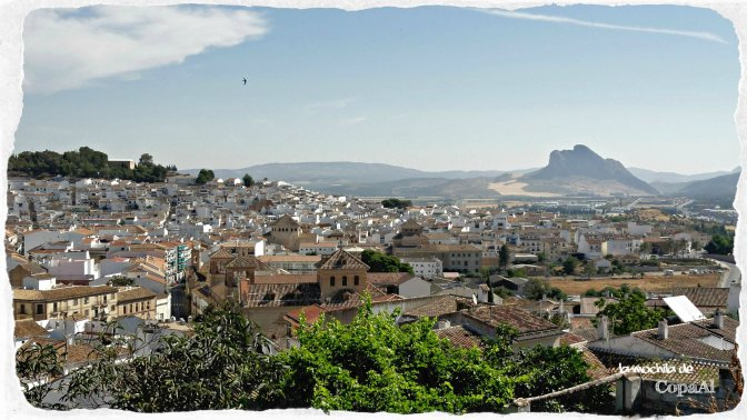 CopaAl_Antequera_15