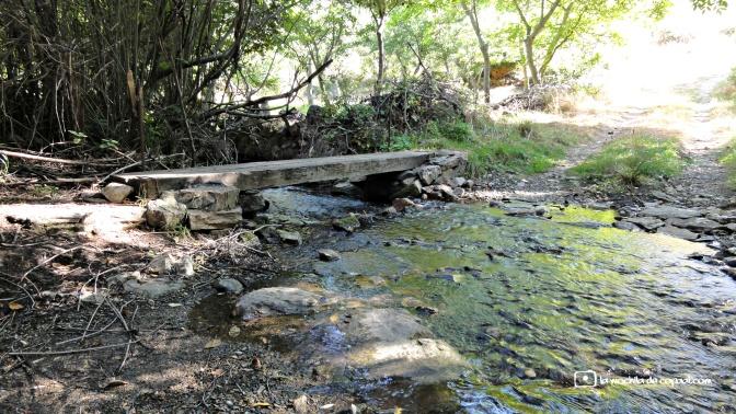 CopaAl_río_Aguisejo_09