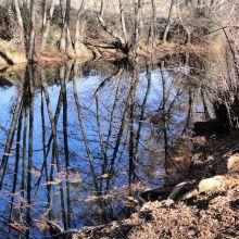 río-guadalix