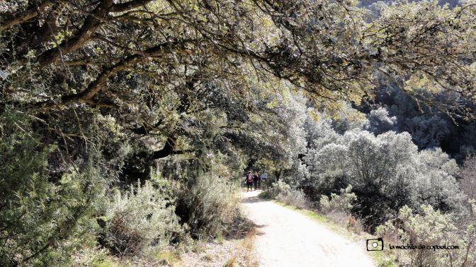 ruta-cañón-río-guadalix