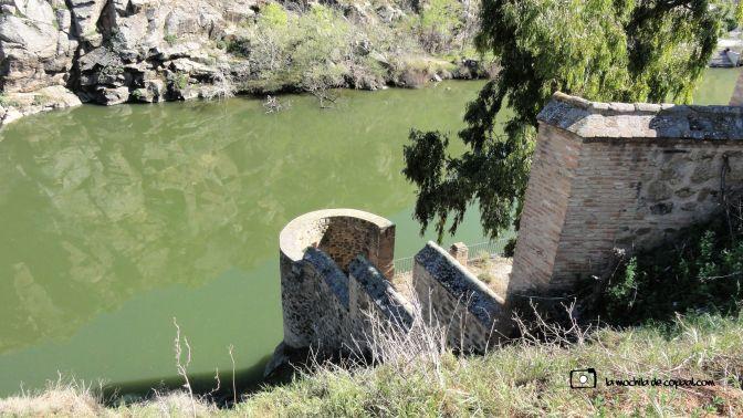 CopaAl-Senda-Natural-Tajo-Toledo-22