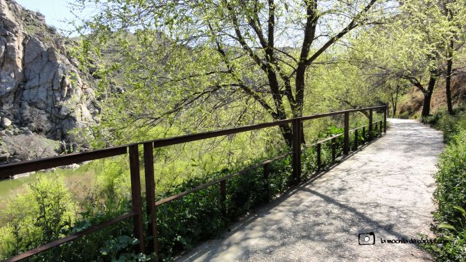 CopaAl-Senda-Natural-Tajo-Toledo-23