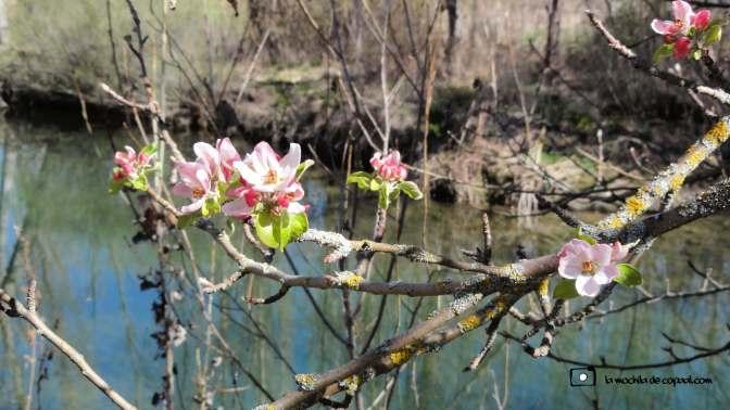 senderismo primavera