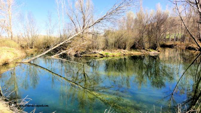 reflejos rio duraton