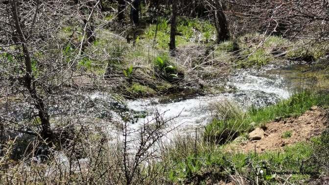 río-guadiela