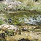 Nacimiento del río Guadiela. En busca de los reflejos turquesa. (II)