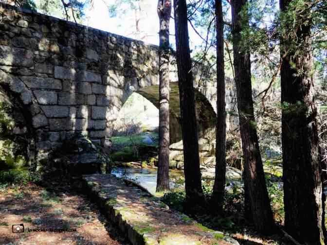 Puente de Navalacarreta