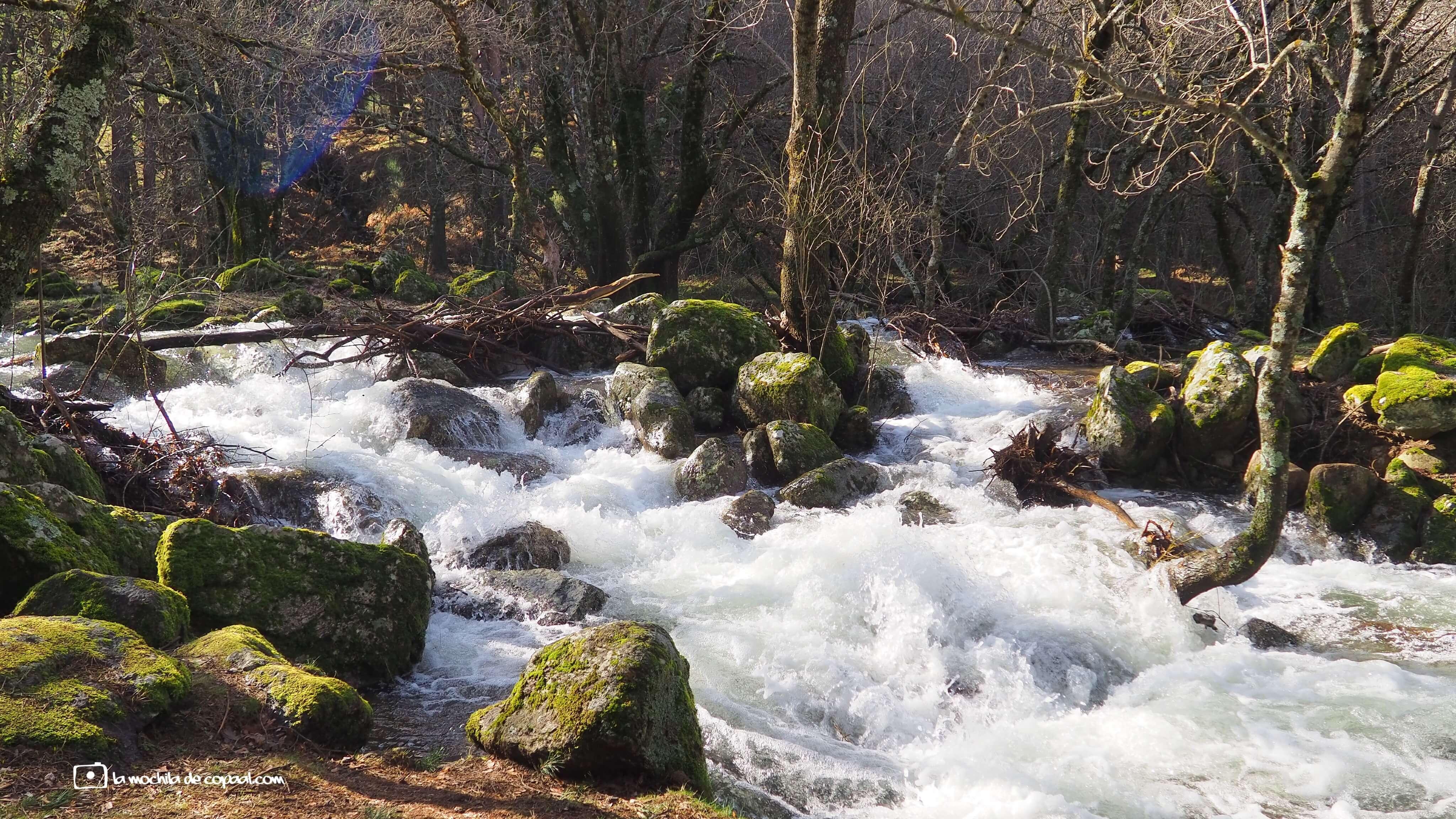 arroyo Aguilón