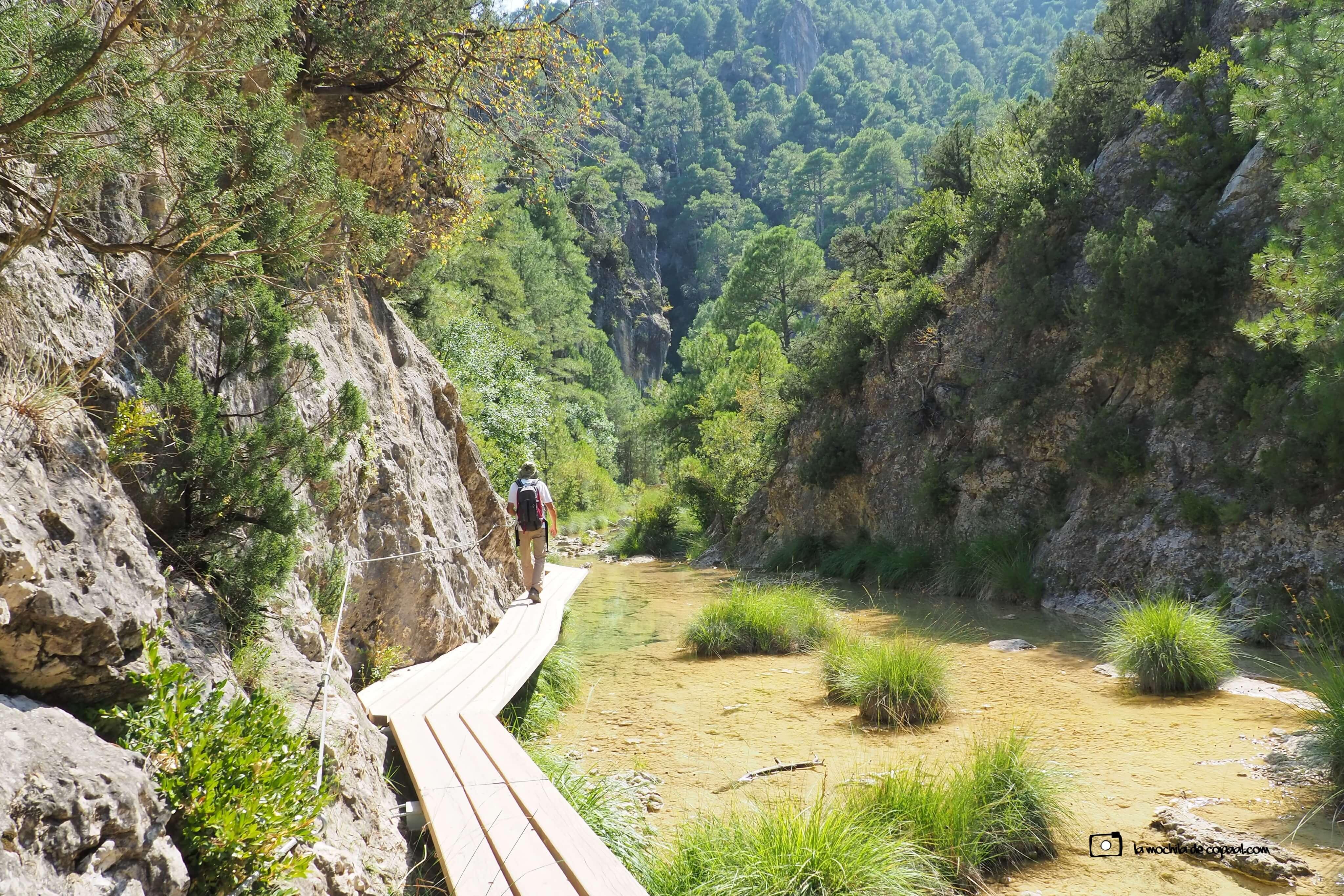 Pasarelas sobre el río Matarraña